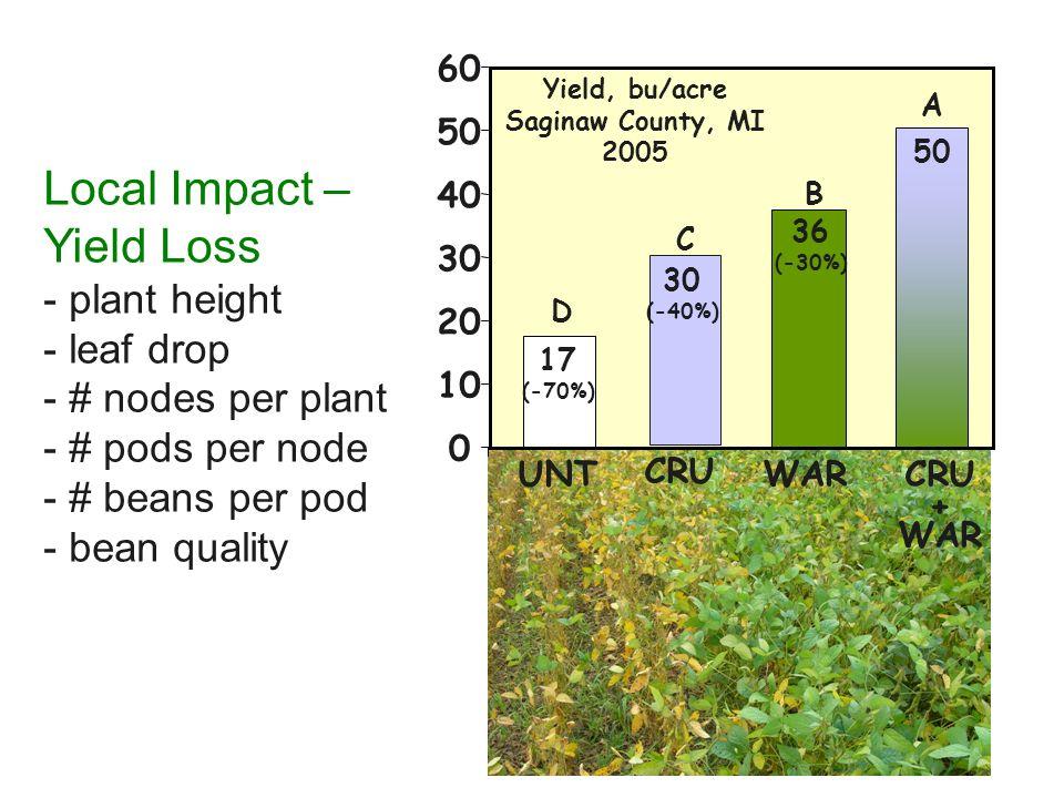 Local Impact – Yield Loss - plant height - leaf drop - # nodes per plant - # pods per node - # beans per pod - bean quality 0 10 20 30 40 50 60 UNT D