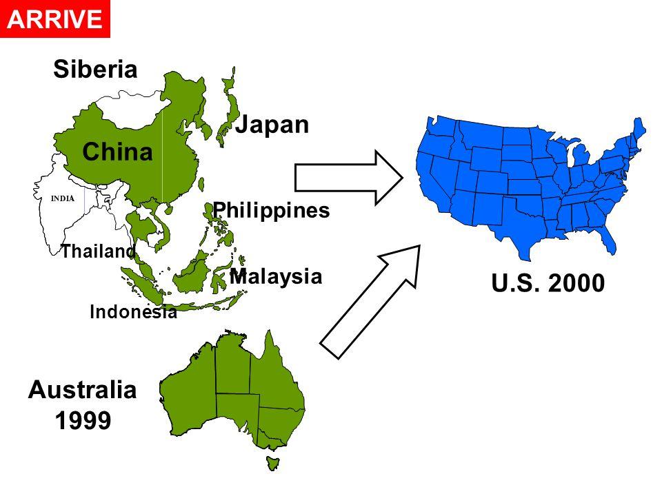 ARRIVE Australia 1999 U.S. 2000