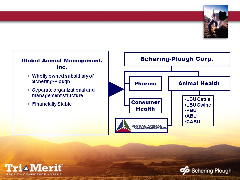 Schering-Plough Corp. Pharma Consumer Health LBU Cattle LBU Swine PBU ABU CABU Animal Health Global Animal Management, Inc. Wholly owned subsidiary of