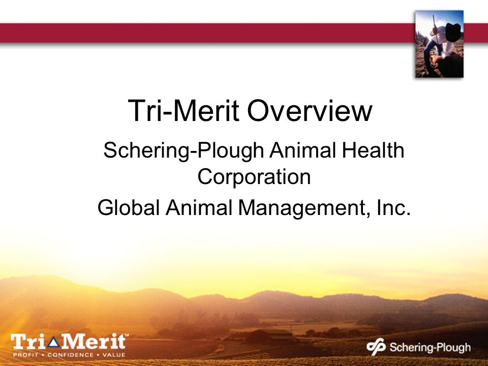 Tri-Merit Overview Schering-Plough Animal Health Corporation Global Animal Management, Inc.