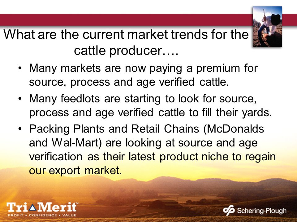 What are the current market trends for the cattle producer…. Many markets are now paying a premium for source, process and age verified cattle. Many f