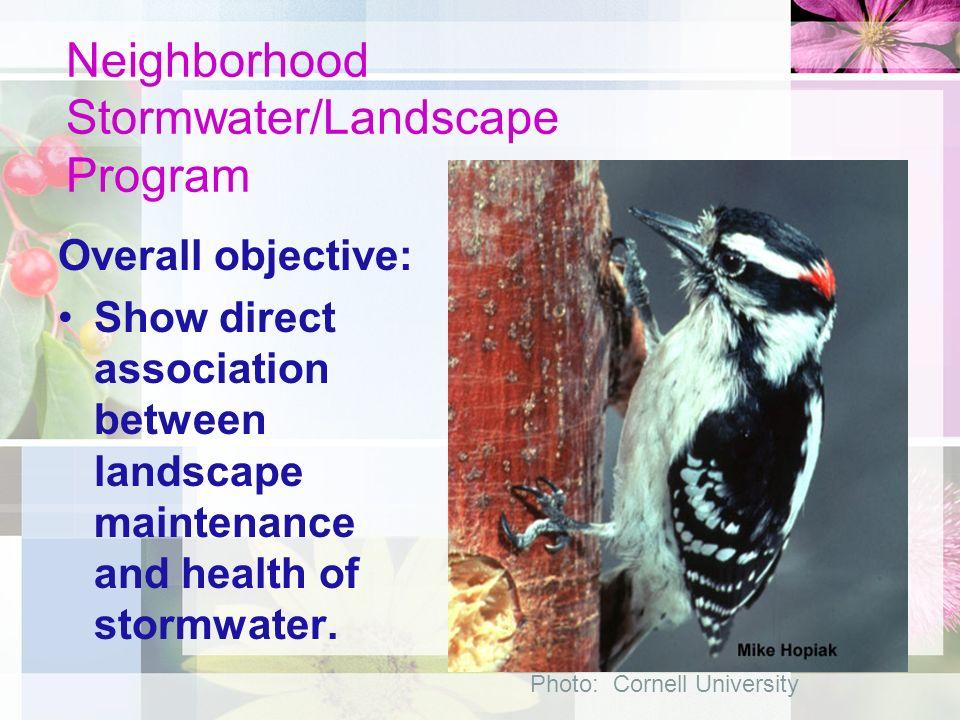 Neighborhood Stormwater/Landscape Program Rebecca L.