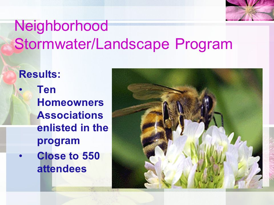Neighborhood Stormwater/Landscape Program Results: Ten Homeowners Associations enlisted in the program Close to 550 attendees