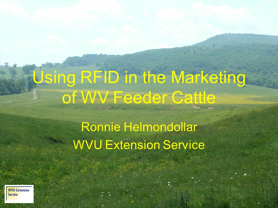 Using RFID in the Marketing of WV Feeder Cattle Ronnie Helmondollar WVU Extension Service