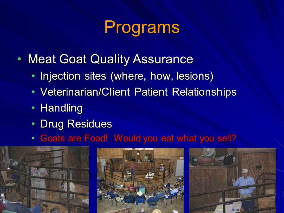 Programs Meat Goat Quality AssuranceMeat Goat Quality Assurance Injection sites (where, how, lesions)Injection sites (where, how, lesions) Veterinarian/Client Patient RelationshipsVeterinarian/Client Patient Relationships HandlingHandling Drug ResiduesDrug Residues Goats are Food.