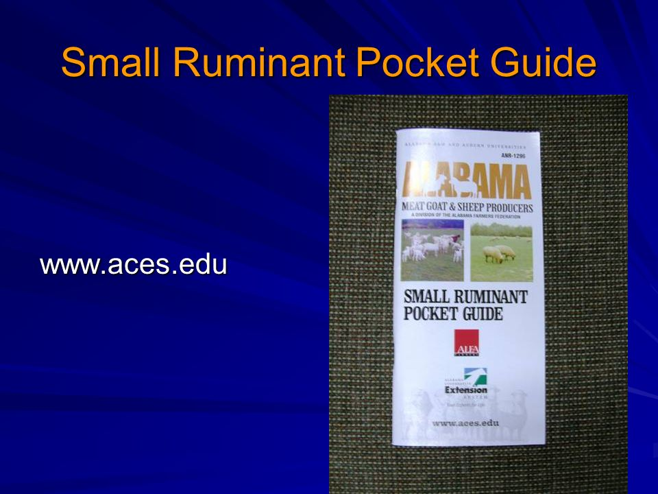 Small Ruminant Pocket Guide www.aces.edu