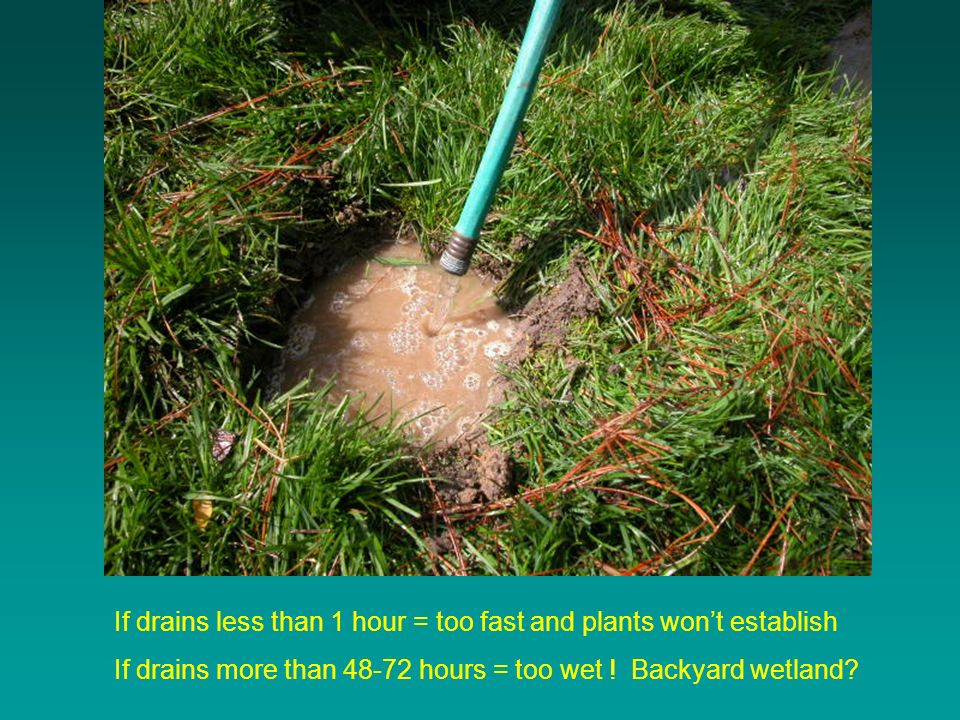 If drains less than 1 hour = too fast and plants wont establish If drains more than hours = too wet .