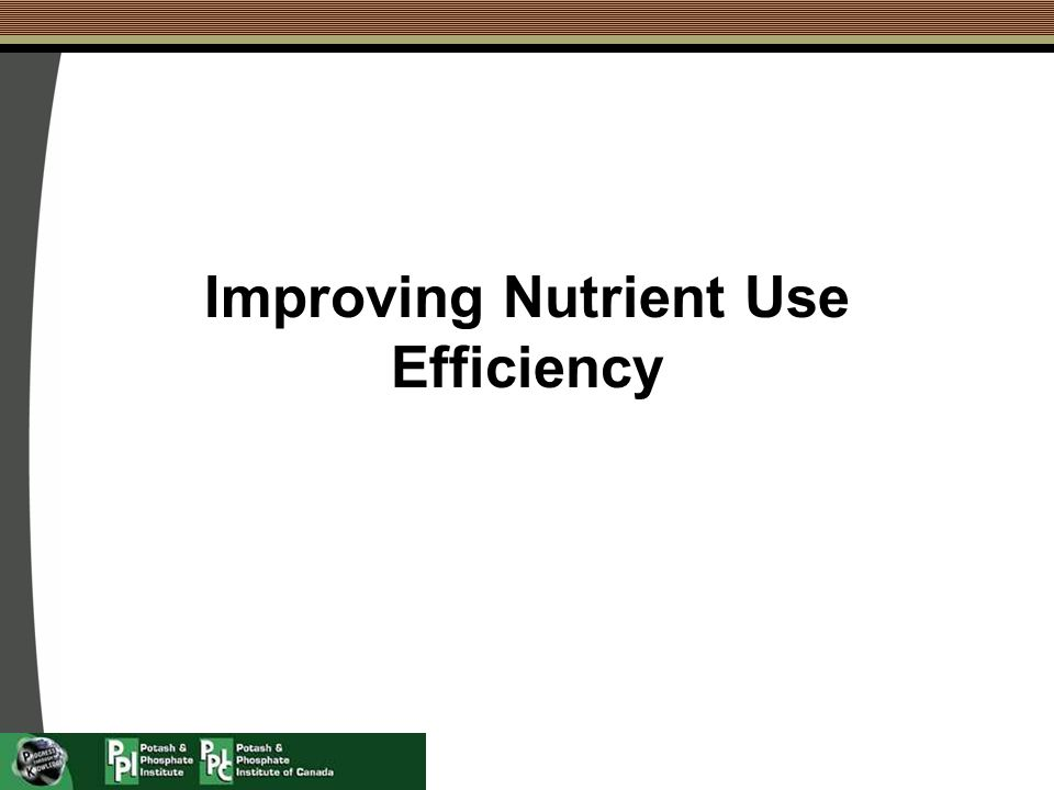 Improving Nutrient Use Efficiency