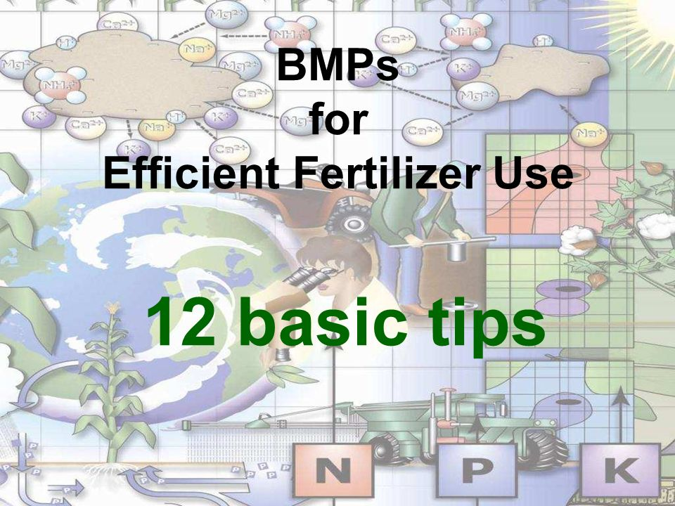 BMPs for Efficient Fertilizer Use 12 basic tips
