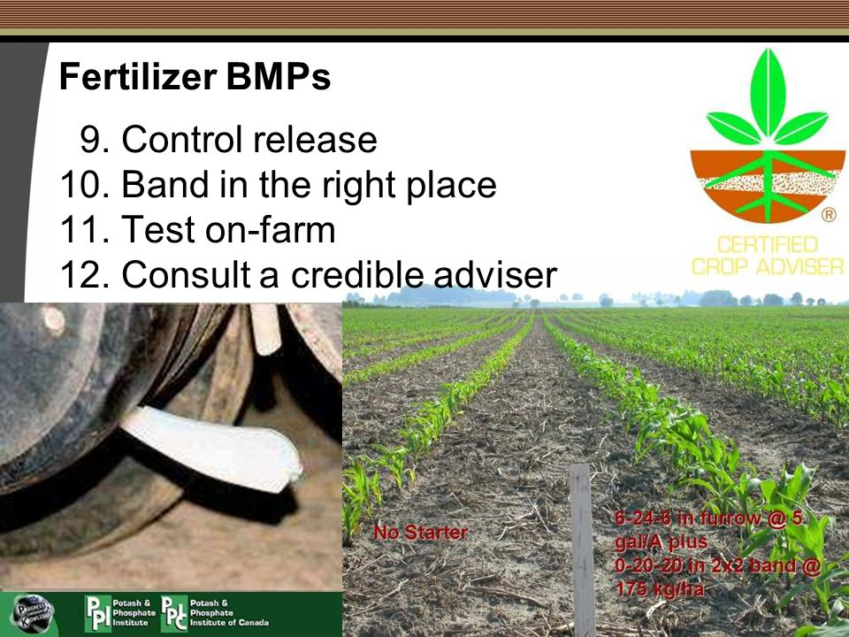 Fertilizer BMPs 9. Control release 10. Band in the right place 11. Test on-farm 12. Consult a credible adviser