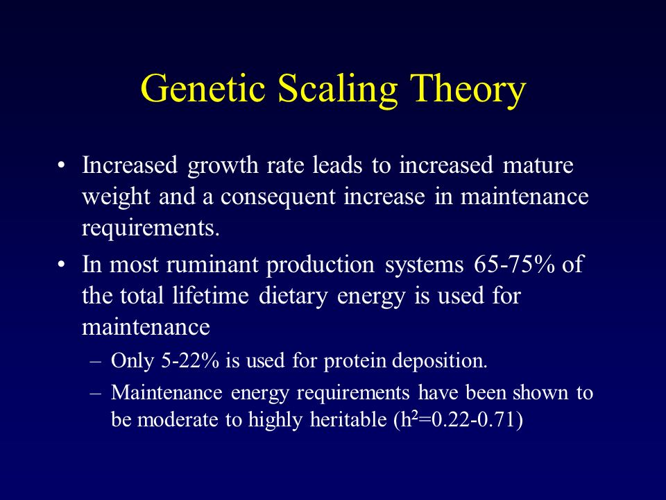 Genetic Scaling Theory Increased growth rate leads to increased mature weight and a consequent increase in maintenance requirements.