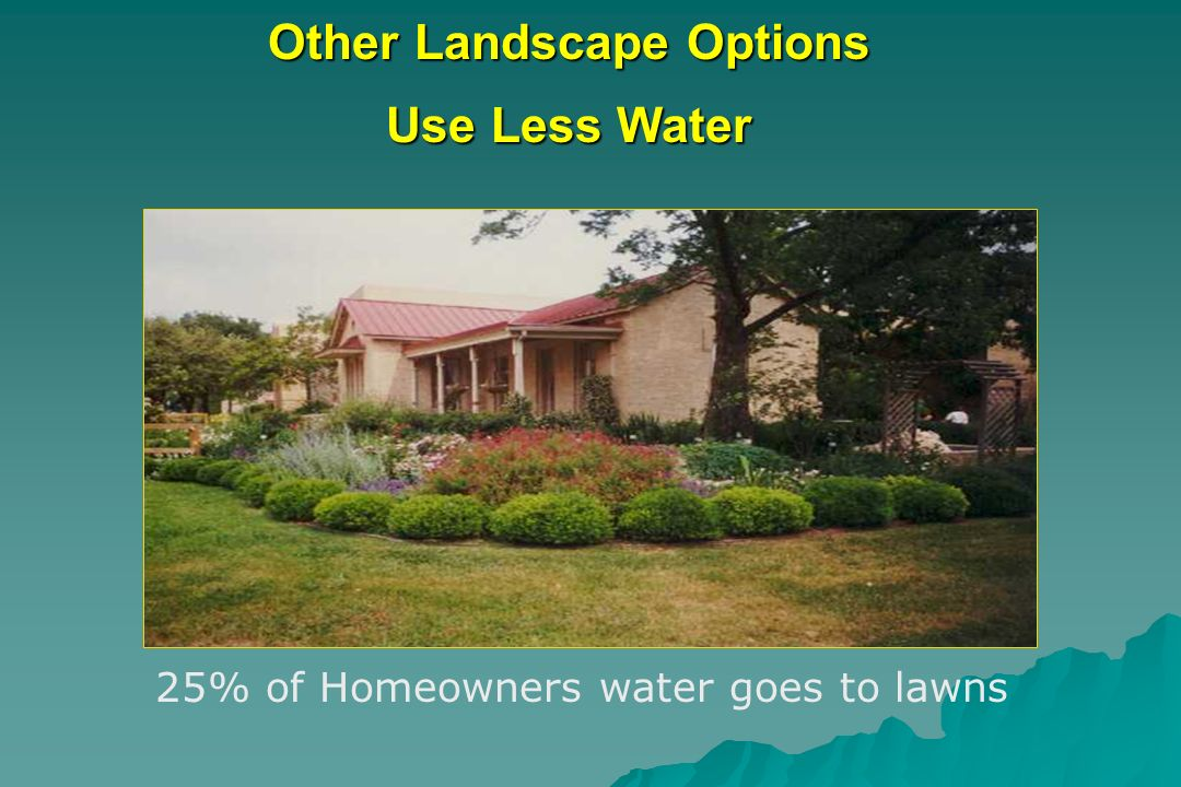 Other Landscape Options Use Less Water 25% of Homeowners water goes to lawns