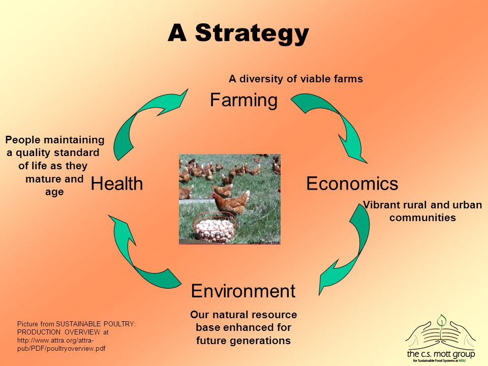 Health Farming Economics A Strategy Environment Picture from SUSTAINABLE POULTRY: PRODUCTION OVERVIEW at   pub/PDF/poultryoverview.pdf People maintaining a quality standard of life as they mature and age Our natural resource base enhanced for future generations Vibrant rural and urban communities A diversity of viable farms
