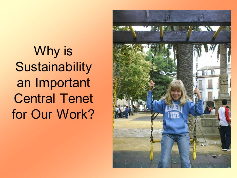 Why is Sustainability an Important Central Tenet for Our Work