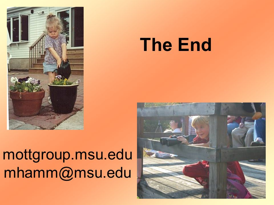 The End mottgroup.msu.edu mhamm@msu.edu