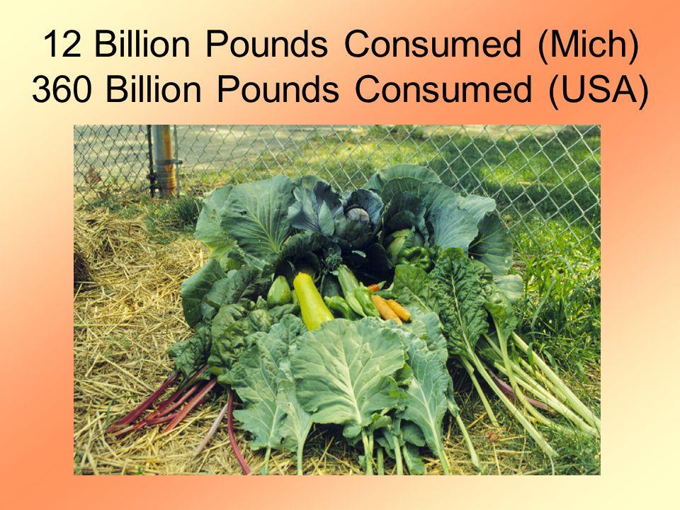 12 Billion Pounds Consumed (Mich) 360 Billion Pounds Consumed (USA)