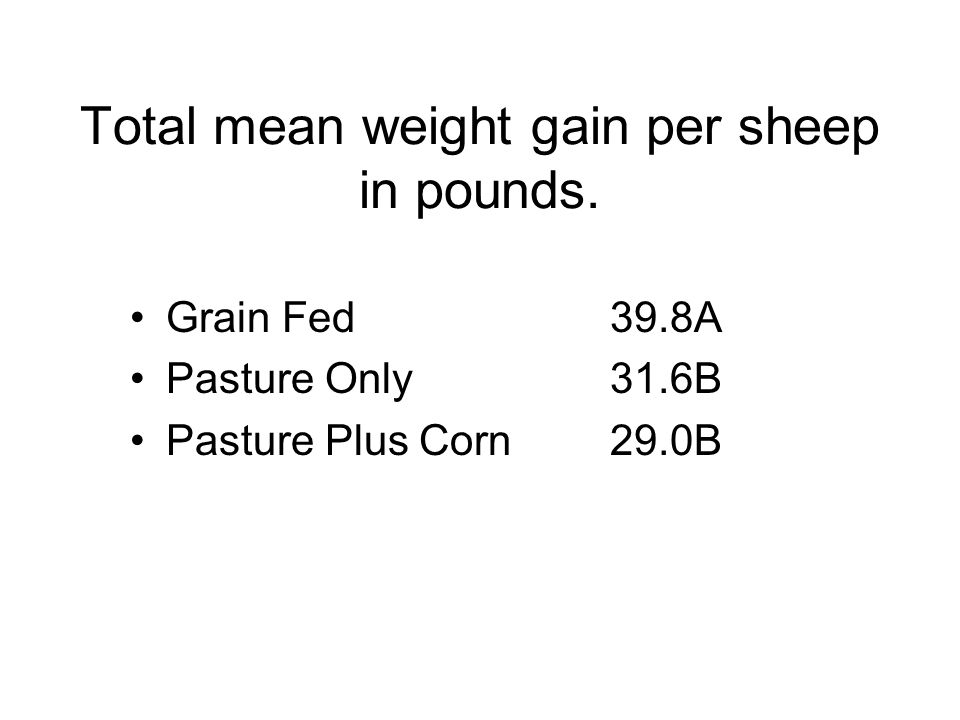 Total mean weight gain per sheep in pounds. Grain Fed39.8A Pasture Only31.6B Pasture Plus Corn29.0B