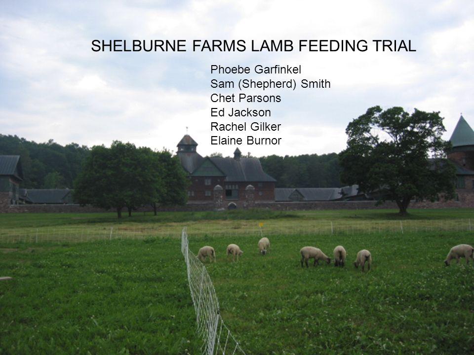 SHELBURNE FARMS LAMB FEEDING TRIAL Phoebe Garfinkel Sam (Shepherd) Smith Chet Parsons Ed Jackson Rachel Gilker Elaine Burnor