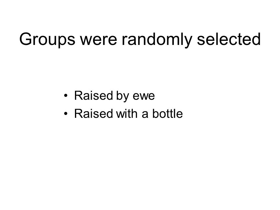 Groups were randomly selected Raised by ewe Raised with a bottle