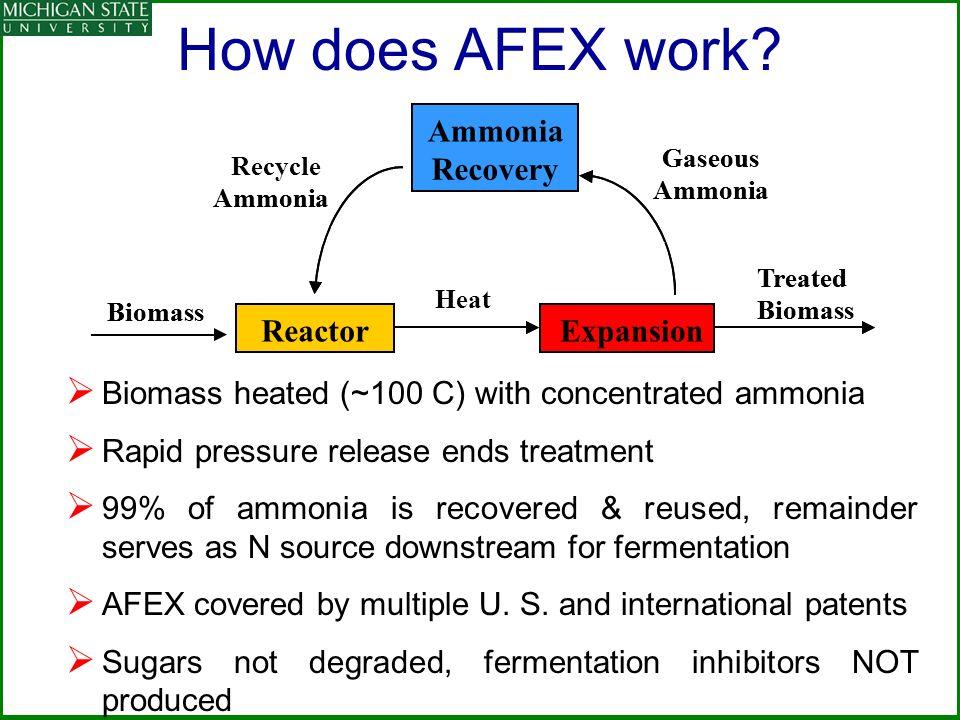 ReactorExplosion Ammonia Recovery Biomass Treated Biomass Recycle Ammonia Gaseous Ammonia ReactorExpansion Ammonia Recovery Biomass Treated Biomass Am