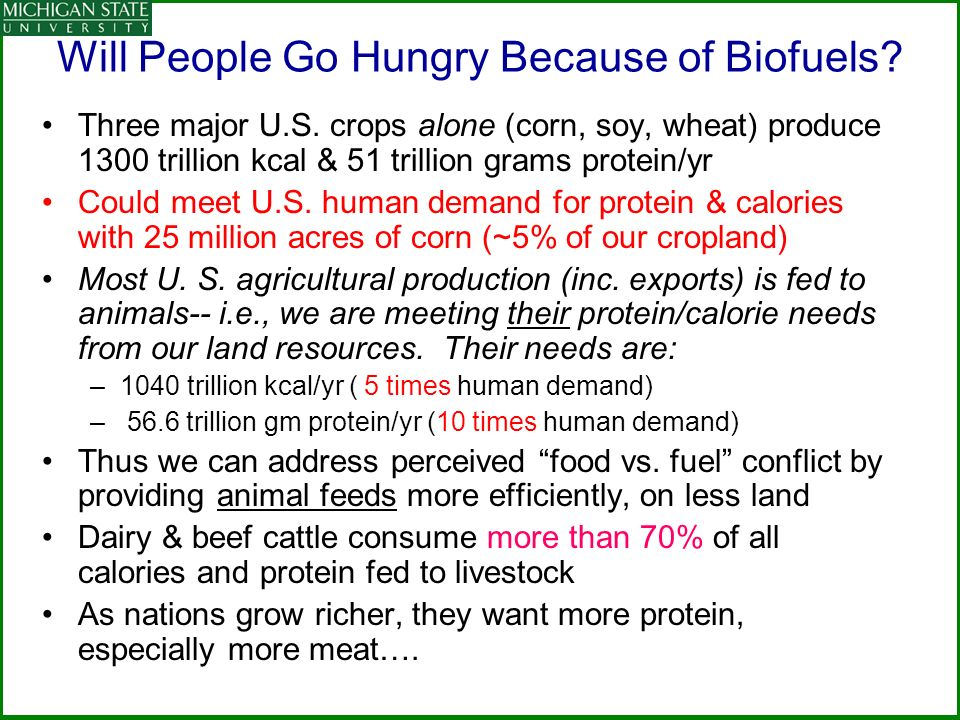 Will People Go Hungry Because of Biofuels.Three major U.S.