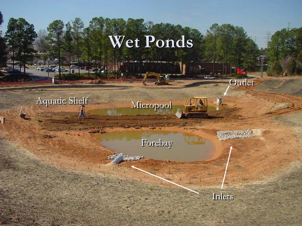 Wet Ponds Inlets Forebay Micropool Outlet Aquatic Shelf