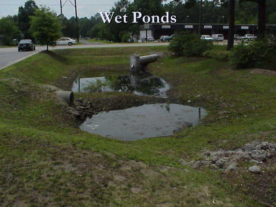 Wet Ponds
