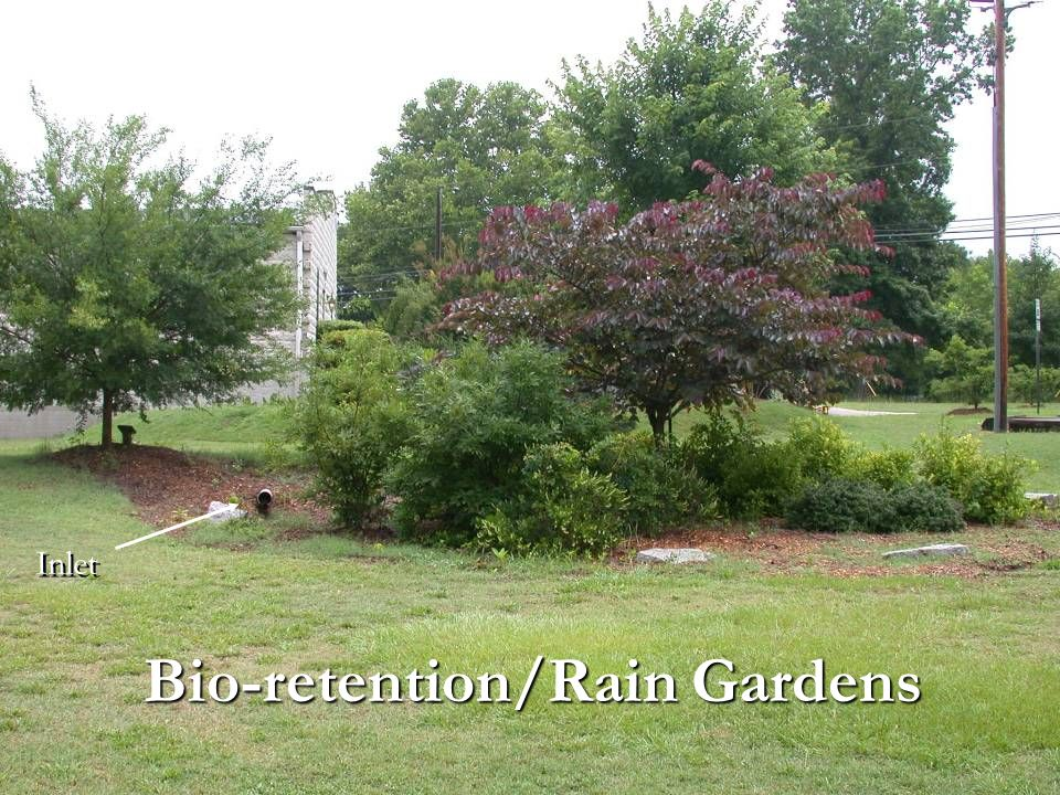 Bio-retention/Rain Gardens Inlet
