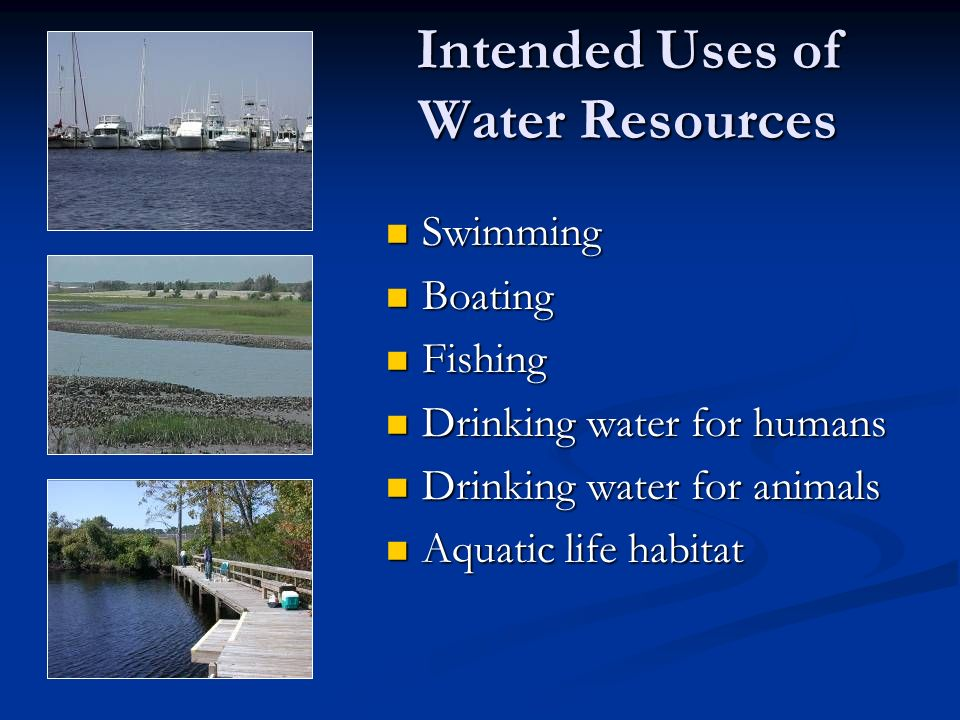Intended Uses of Water Resources Swimming Swimming Boating Boating Fishing Fishing Drinking water for humans Drinking water for humans Drinking water for animals Drinking water for animals Aquatic life habitat Aquatic life habitat