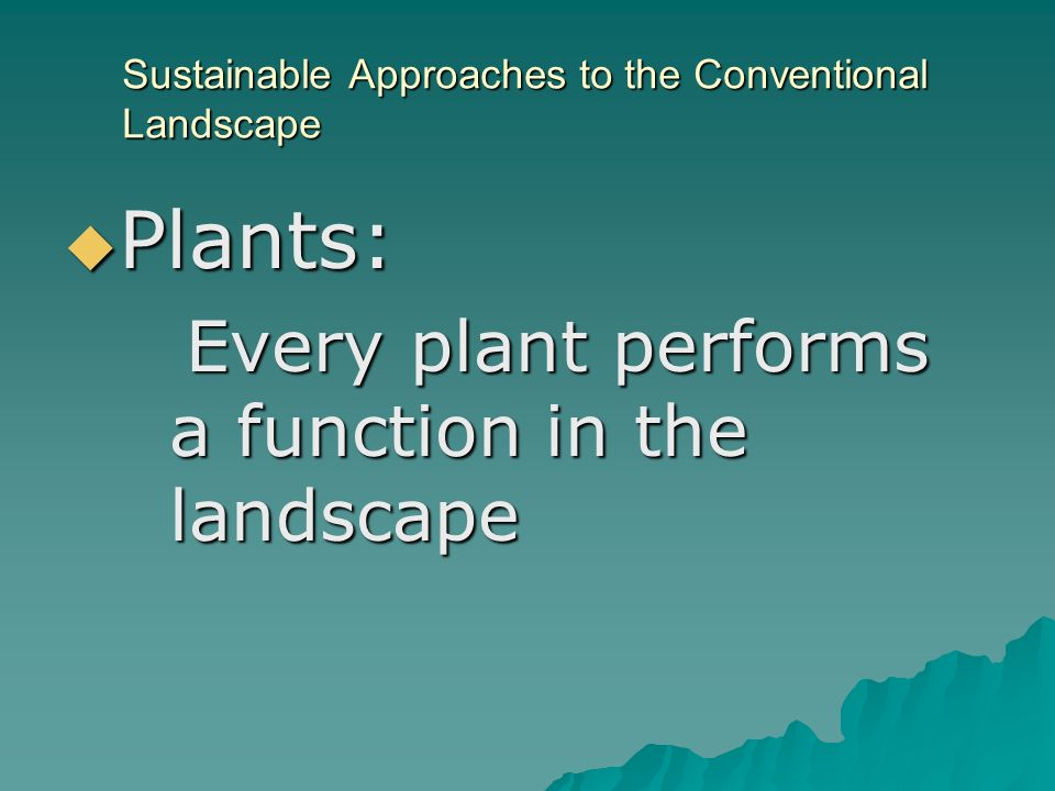 Sustainable Approaches to the Conventional Landscape Plants: Plants: Every plant performs a function in the landscape Every plant performs a function in the landscape