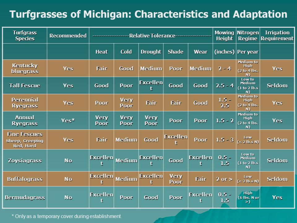 Turfgrasses of Michigan: Characteristics and Adaptation Turfgrass Species Recommended Relative Tolerance Relative Tolerance Mowing Height NitrogenRegimeIrrigationRequirement HeatColdDroughtShadeWear(inches) Per year Kentucky bluegrass YesFairGoodMediumPoorMedium Medium to High (2 to 4 lbs.
