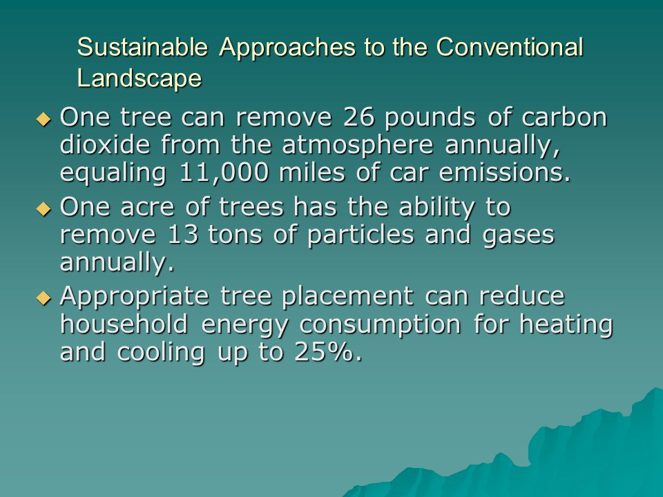 Sustainable Approaches to the Conventional Landscape One tree can remove 26 pounds of carbon dioxide from the atmosphere annually, equaling 11,000 miles of car emissions.