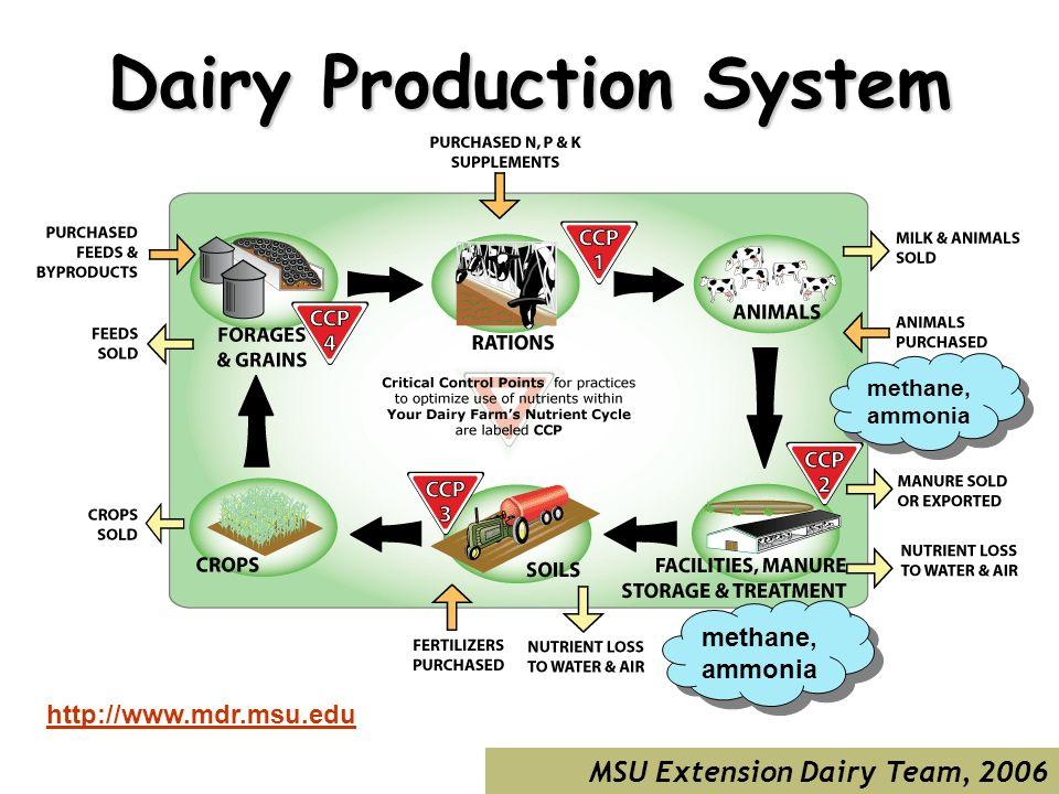 MSU Extension Dairy Team, 2006 Dairy Production System http://www.mdr.msu.edu methane, ammonia methane, ammonia methane, ammonia methane, ammonia