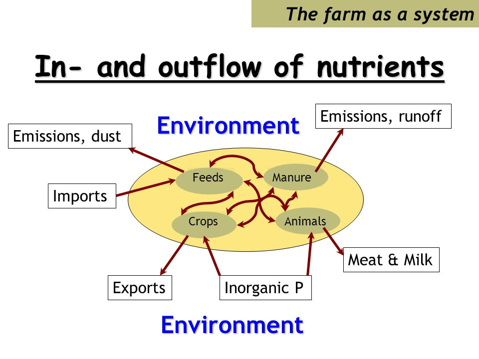 In- and outflow of nutrients CropsAnimals ManureFeeds The farm as a systemEnvironment Environment Inorganic P Meat & Milk Emissions, runoff Emissions, dust Imports Exports