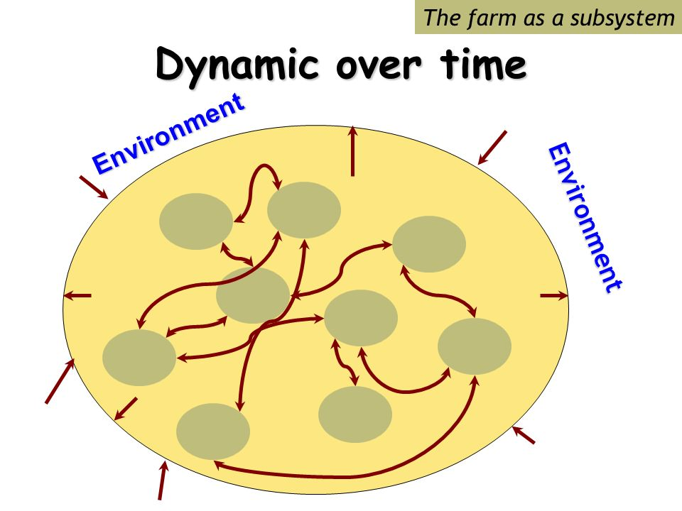 Dynamic over time The farm as a subsystemEnvironment Environment