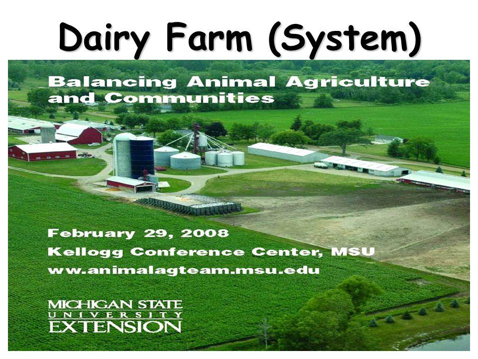Dairy Farm (System)