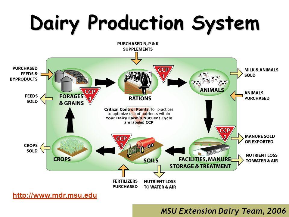 MSU Extension Dairy Team, 2006 Dairy Production System http://www.mdr.msu.edu