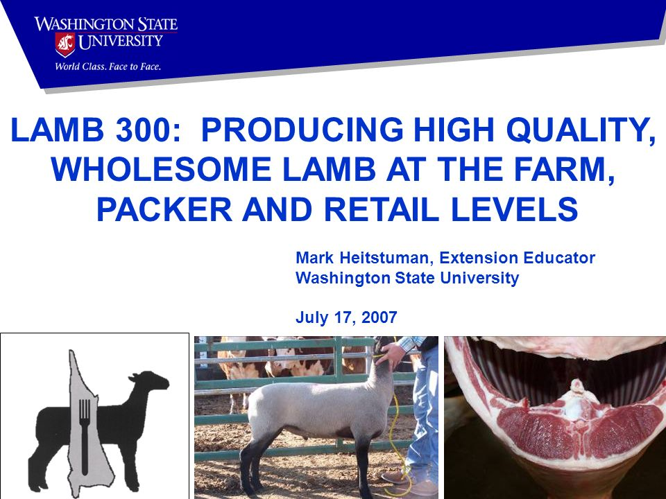 Mark Heitstuman, Extension Educator Washington State University July 17, 2007 LAMB 300: PRODUCING HIGH QUALITY, WHOLESOME LAMB AT THE FARM, PACKER AND RETAIL LEVELS