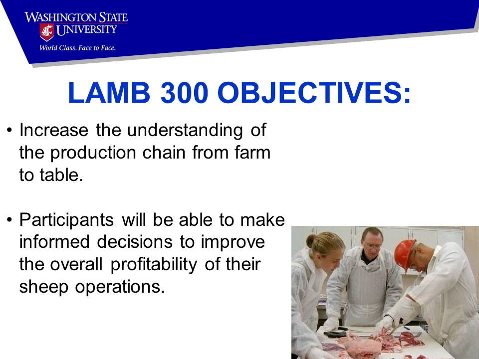 LAMB 300 OBJECTIVES: Increase the understanding of the production chain from farm to table.