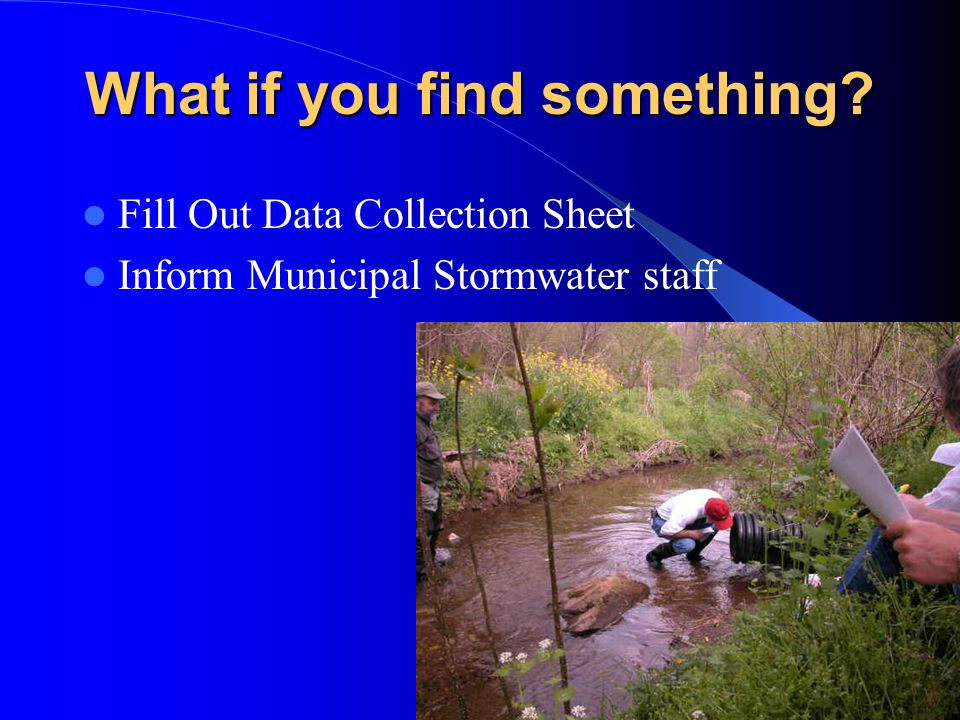 What if you find something? Fill Out Data Collection Sheet Inform Municipal Stormwater staff