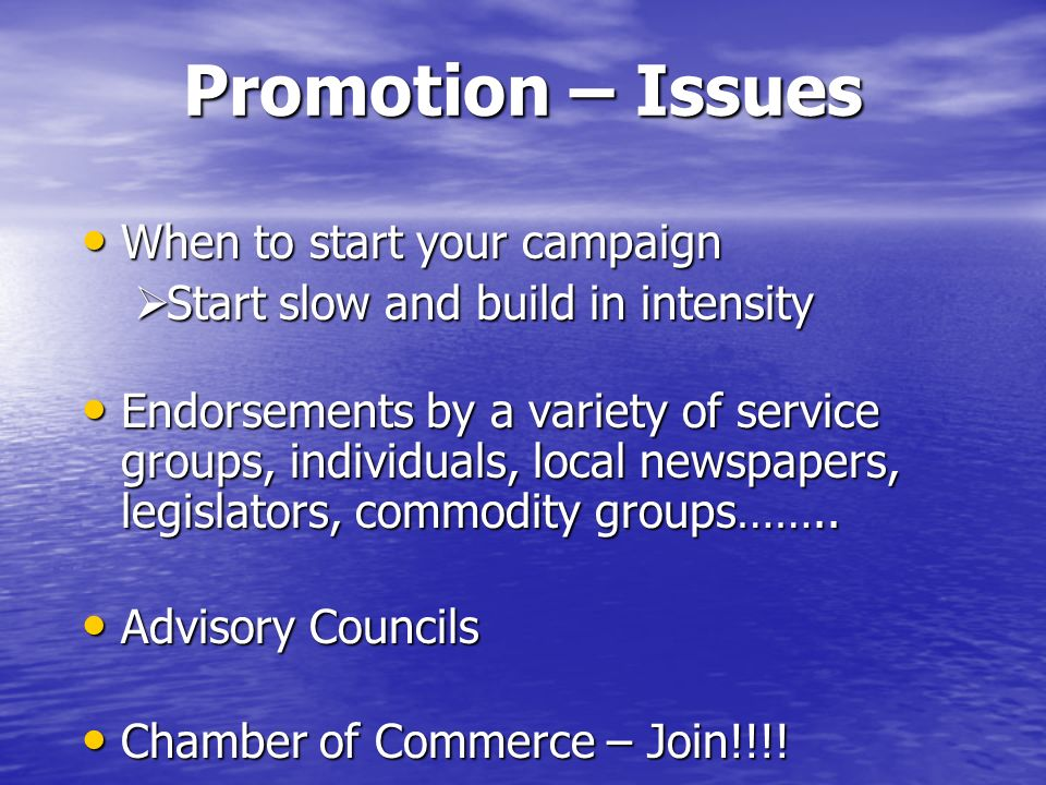 Promotion – Issues When to start your campaign When to start your campaign Start slow and build in intensity Start slow and build in intensity Endorse