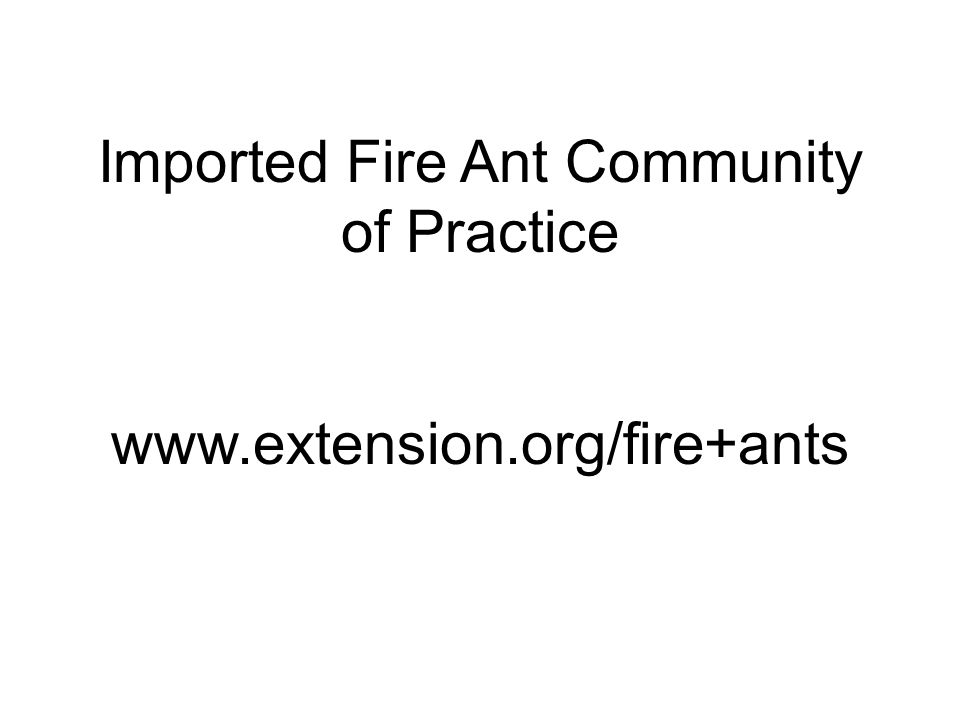 Imported Fire Ant Community of Practice www.extension.org/fire+ants