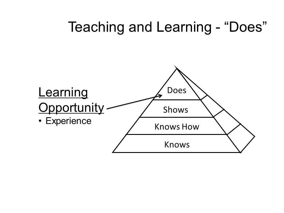 Learning Opportunity Experience Teaching and Learning - Does Does Shows Knows How Knows