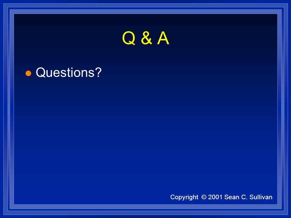 Copyright © 2001 Sean C. Sullivan Q & A l Questions