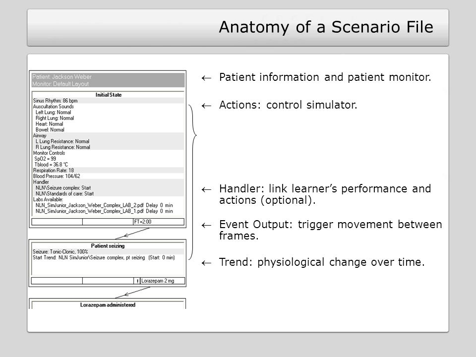Anatomy of a Scenario File Patient information and patient monitor.