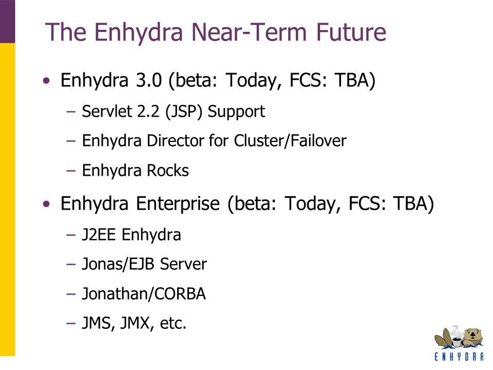 The Enhydra Near-Term Future Enhydra 3.0 (beta: Today, FCS: TBA) –Servlet 2.2 (JSP) Support –Enhydra Director for Cluster/Failover –Enhydra Rocks Enhy