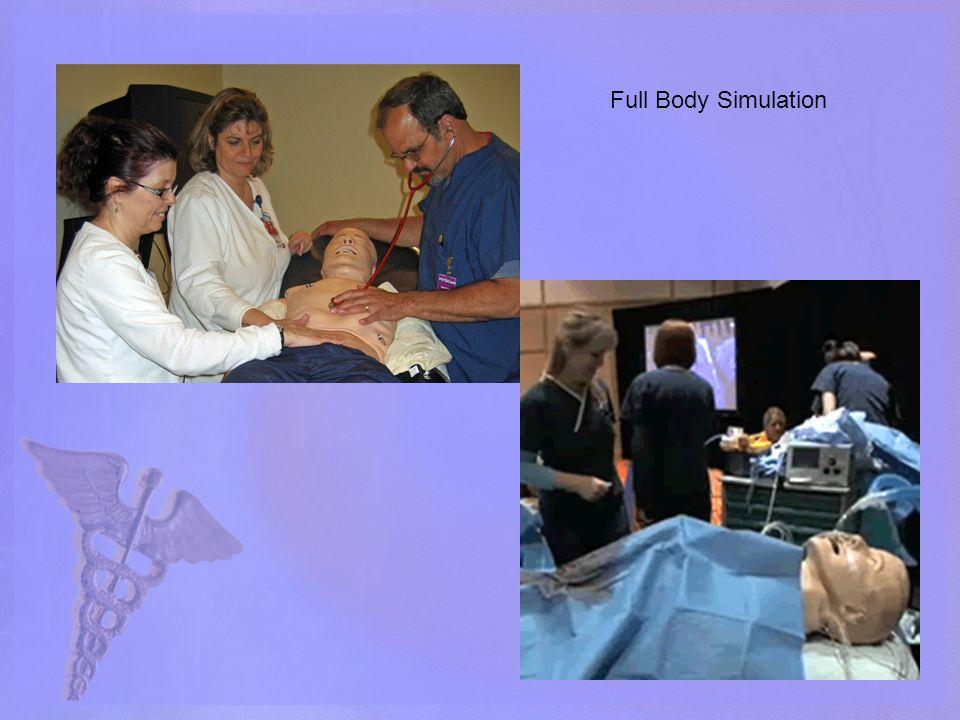 Full Body Simulation