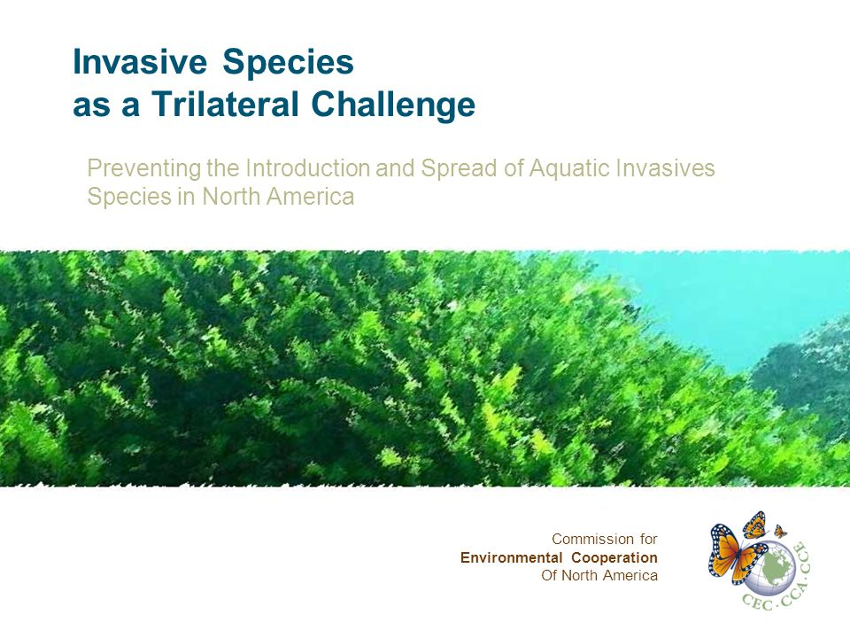 Invasive Species as a Trilateral Challenge Preventing the Introduction and Spread of Aquatic Invasives Species in North America Commission for Environmental Cooperation Of North America