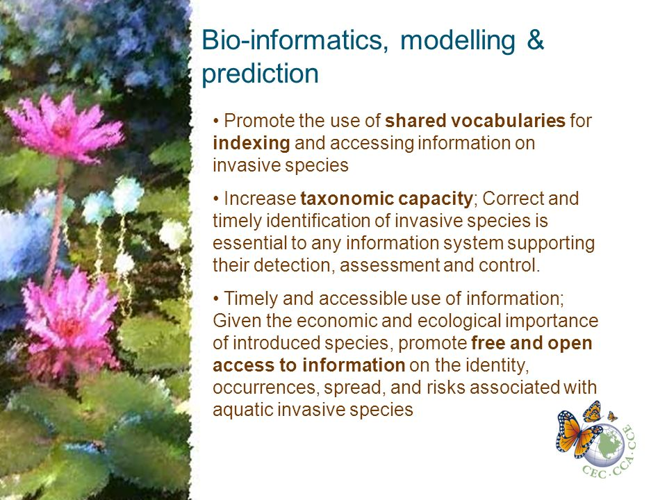 Bio-informatics, modelling & prediction Promote the use of shared vocabularies for indexing and accessing information on invasive species Increase taxonomic capacity; Correct and timely identification of invasive species is essential to any information system supporting their detection, assessment and control.
