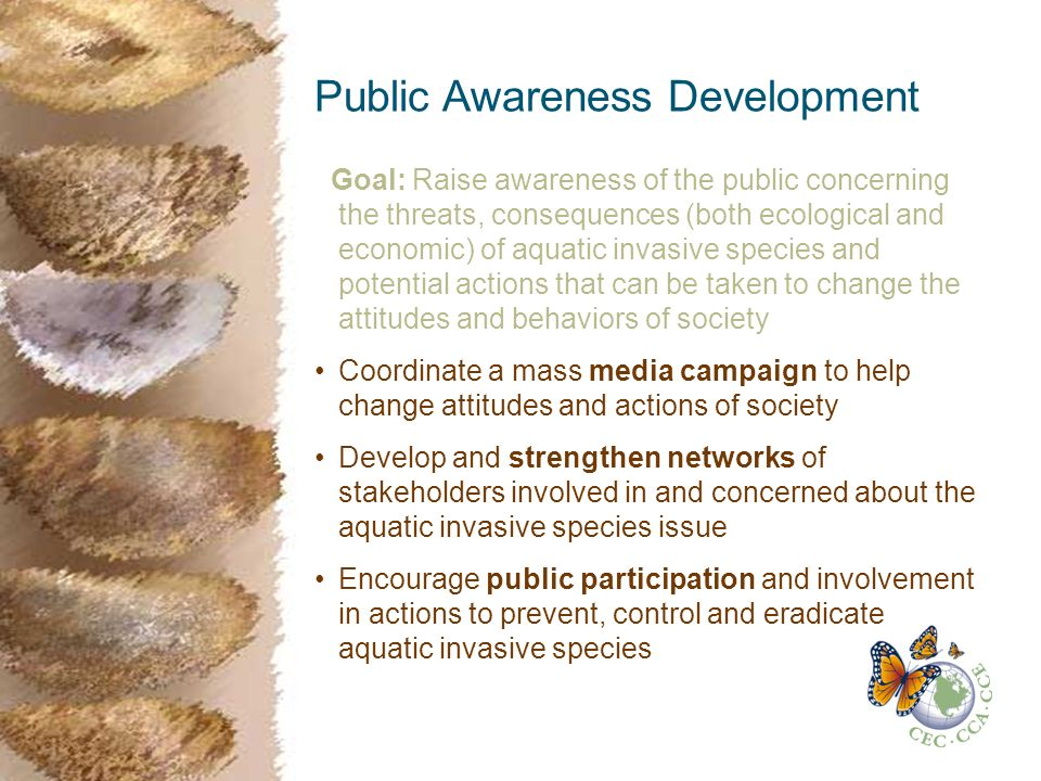 Public Awareness Development Goal: Raise awareness of the public concerning the threats, consequences (both ecological and economic) of aquatic invasive species and potential actions that can be taken to change the attitudes and behaviors of society Coordinate a mass media campaign to help change attitudes and actions of society Develop and strengthen networks of stakeholders involved in and concerned about the aquatic invasive species issue Encourage public participation and involvement in actions to prevent, control and eradicate aquatic invasive species